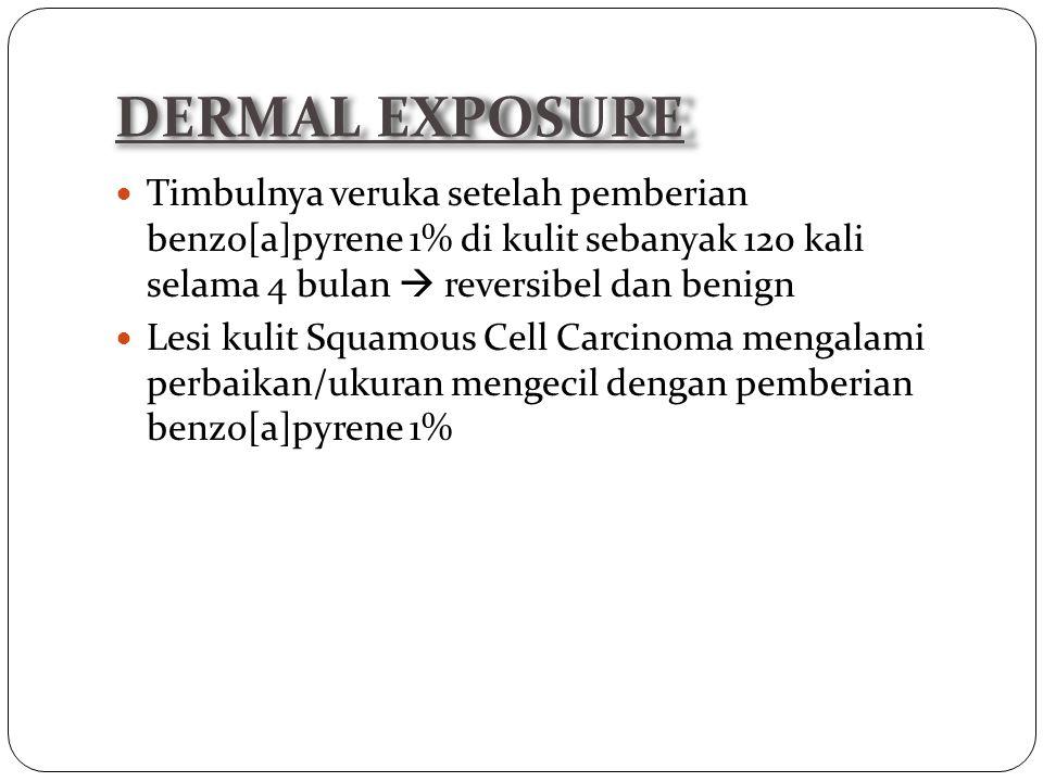 DERMAL EXPOSURE Timbulnya veruka setelah pemberian benzo[a]pyrene 1% di kulit sebanyak 120 kali selama 4 bulan  reversibel dan benign.